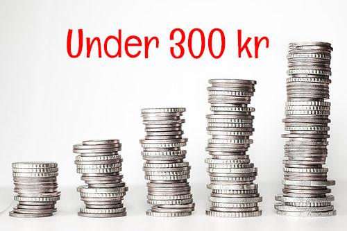 Under300kr