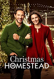 Movie christmas in homestead